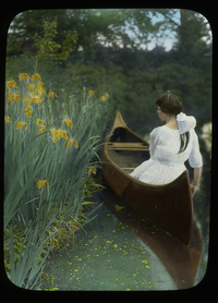 Woman in canoe, near yellow iris