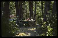 People sitting around table in the woods