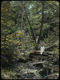 Holland Glen (young man sitting on log over woodland stream bed)