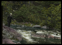 Whatley Glen (man fishing in Mt. stream)
