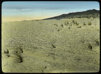 Flat desert with hill in background