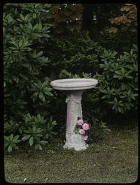 Bird Bath, Falmouth (light colored stone, pink roses, rhododendrons, azaleas, maples)