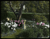 Mrs. Churchill (perennial garden, sundial, tree, hedges)