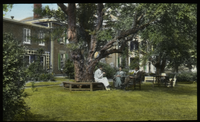 Hartford (men on bench and chairs beneath large oak tree on lawn)