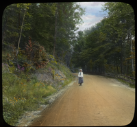 Mt. Tom Road (girl standing on road with tress and wildflowers)