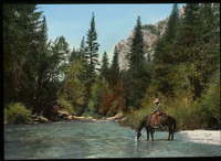 Kings River Canyon (horse with rider drinking in woodland stream)