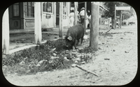 Village street down south (pig along the curb in street)