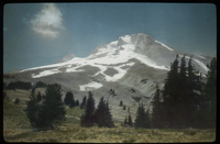 Snowcapped rocky mountain with evergreen trees at base