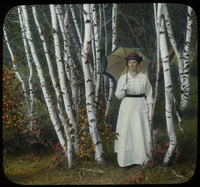 The Grey Birches (lady with parasol among birches)