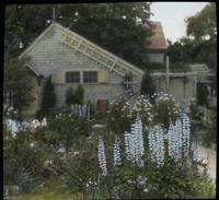 Perennials - Falmouth
