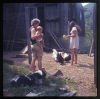 Nina feeding chickens, mother and Eben, dog