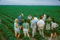 AFSC trip 1962