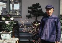 Old gardener