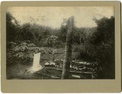 Photographs: Walter M. Dickinson's grave (Cuba)