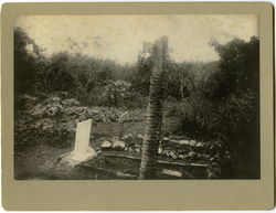Photographs: Walter M. Dickinson's grave (Cuba), linking to the digital object