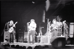 Richard Nader's Rock and Roll Revival concert at the Springfield Civic Center: back-up band (blurry) (Springfield, Mass.), linking to the digital object