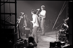 Grateful Dead concert at Springfield Civic Center: band in performance: Donna Godchaux, Bob Weir, Phil Lesh (l. to r.) (Springfield, Mass.), linking to the digital object