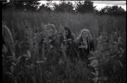 Three communards crouching in a grassy field (Greenfield, Mass.), linking to the digital object