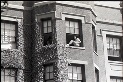 Young men sitting in an open second story window (Springfield, Mass.), linking to the digital object