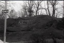"""Krishna"" spray painted on rock in Central Park (New York, N.Y.), linking to the digital object"