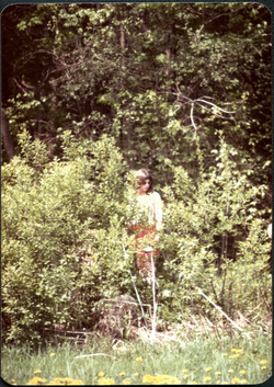 Unidentified woman standing in brush at the edge of the woods (Turners Falls, Mass.), linking to the digital object