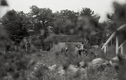 Working in the Brotherhood of the Spirit commune garden (Warwick, Mass.), linking to the digital object