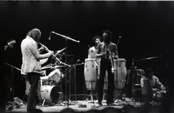 Miles Davis in performance: Dave Liebman (sax), James Mtume (congas), Miles Davis (trumpet), and Badal Roy (tabla) (New York, N.Y.), linking to the digital object