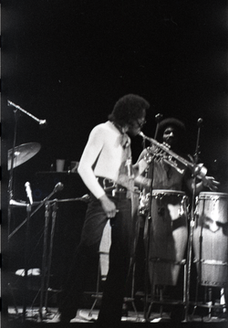 Miles Davis in performance: Davis (trumpet) and James Mtume (congas) (New York, N.Y), linking to the digital object