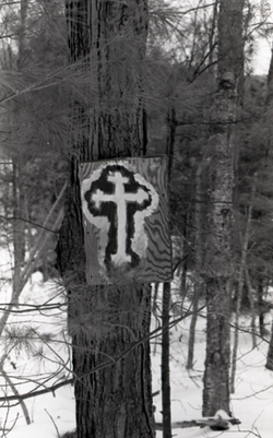 Hand-painted cross on plywood plank, mounted to a white pine in the woods (Warwick, Mass.), linking to the digital object