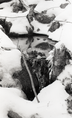 Stream, with snow and ice (Warwick, Mass.), linking to the digital object