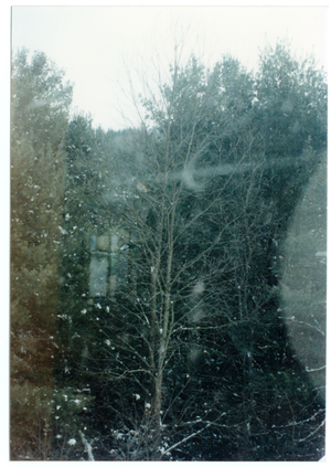 Organic Farmers Associations Council (OFAC) meeting: view of snow through a window