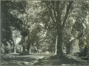 Deerfield Street