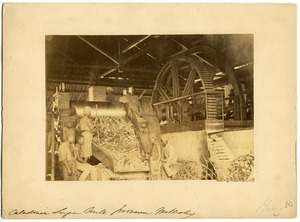 Caledonian Sugar Mill, Province Wellesley, Penang