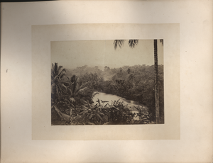 River scene at Buitenzorg, Java, linking to the digital object