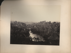 View at Buitenzorg, near Batavia, linking to the digital object