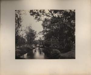 View at Tanah Abang, Batavia, Looking Down the River, linking to the digital object