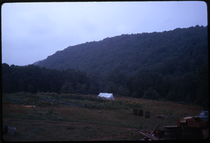Johnson Pasture Commune: Field, linking to the digital object