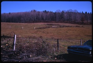 Montague Farm: 'Field in back of house,' [Montague]