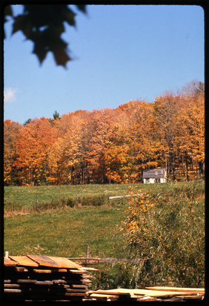 Montague Farm: View of field, Montague
