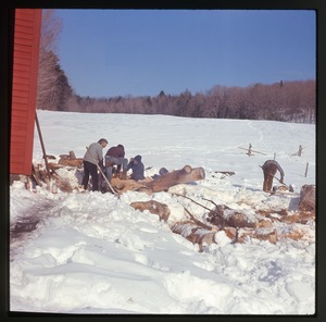 Montague Farm: Splitting wood in the snow, Montague