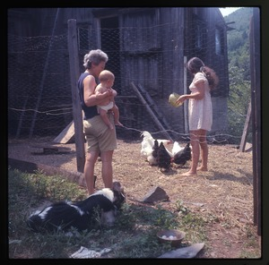 Montague Farm: Nina feeding chickens, mother and Eben, dog