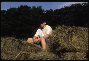 Wendell Farm: Haying, Wendell(?), linking to the digital object