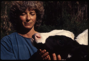 Wendell Farm: Nina Keller with Holstein calf, Wendell(?), linking to the digital object