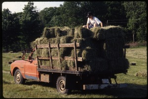 Wendell Farm: Truck loaded with hay bales, Wendell(?)
