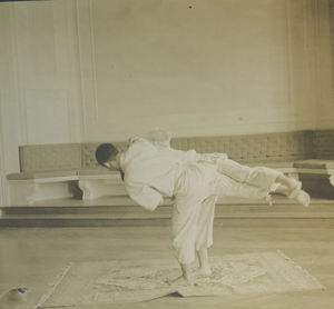 Tomoe nage (b), linking to the digital object