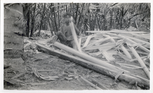 A man splitting off the outer part of a petiole from a stalk of aboca. The part he splits off is called a 'tuxe' and is later stripped of its pulp to leave the fiber, known as Manila hemp.  Calian, Davao., linking to the digital object