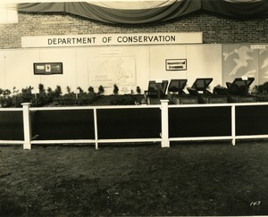 Department of Conservation: Forest nurseries booth