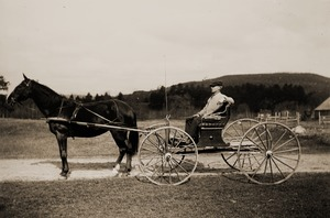 Oscar A. King in his carriage, with horse Mae (Greenwich, Mass.)
