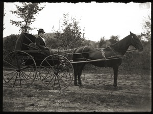 Woman in a carriage, with horse, dressed for cold weather (Greenwich, Mass.)