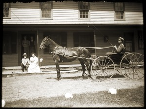 Driver with horse and buggy in front of Riverside Hotel (Greenwich, Mass.)